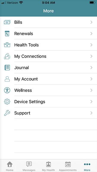 """more"" screen, tap ""journal"""