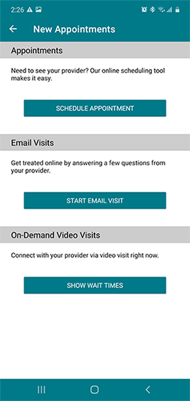 """New appointment options, """"email visit"""" middle option"""